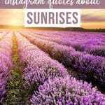 Incredible Sunrise Captions for Instagram