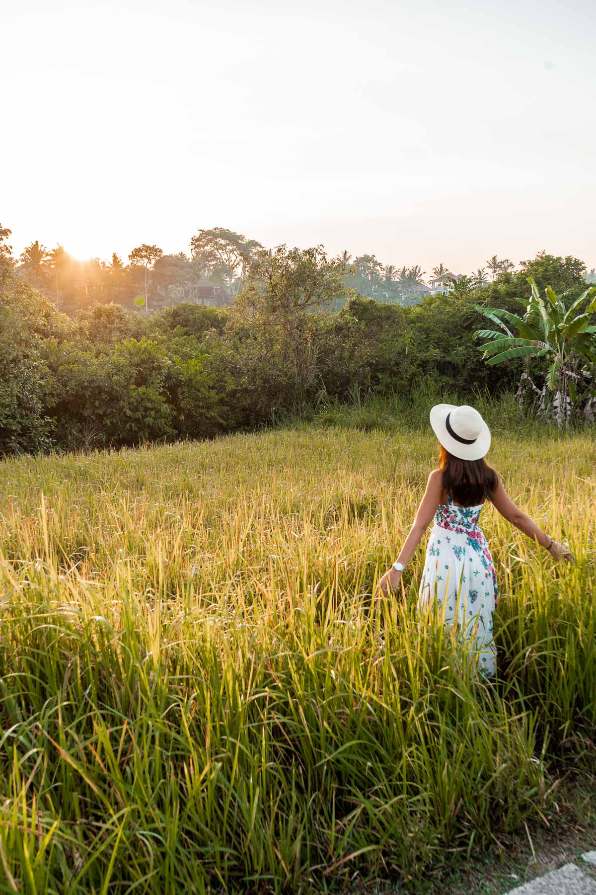 Girl standing in the grass, watching the sunrise at Campuhan Ridge Walk in Ubud, Bali