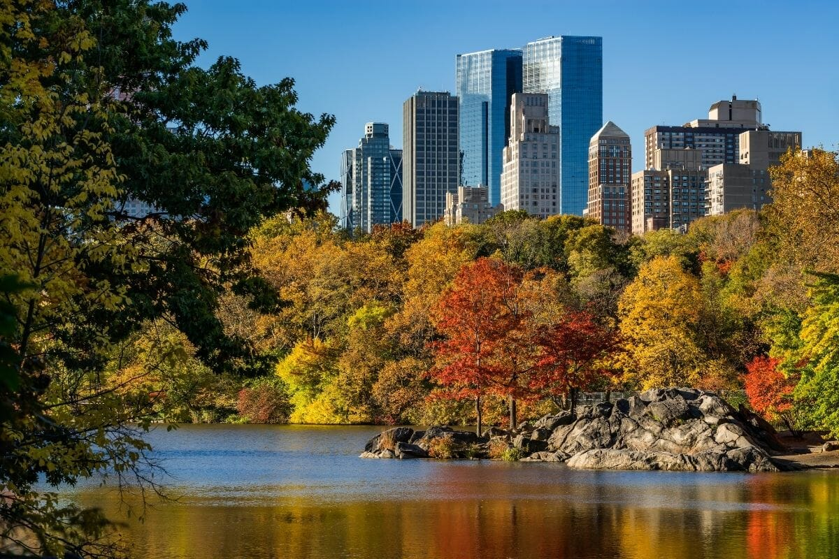 Central Park and Upper West Side in Fall