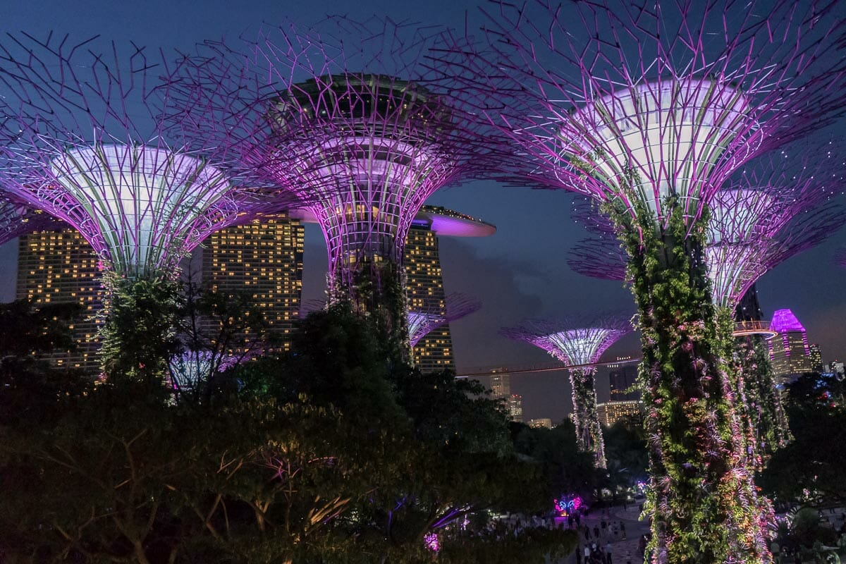Gardens by the Bay at night in Singapore