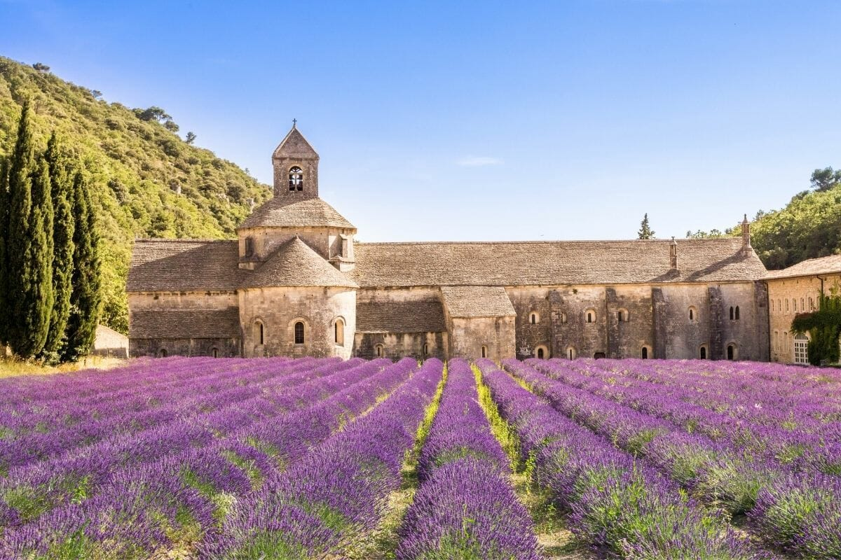 Sénanque Abbey in Provence, France