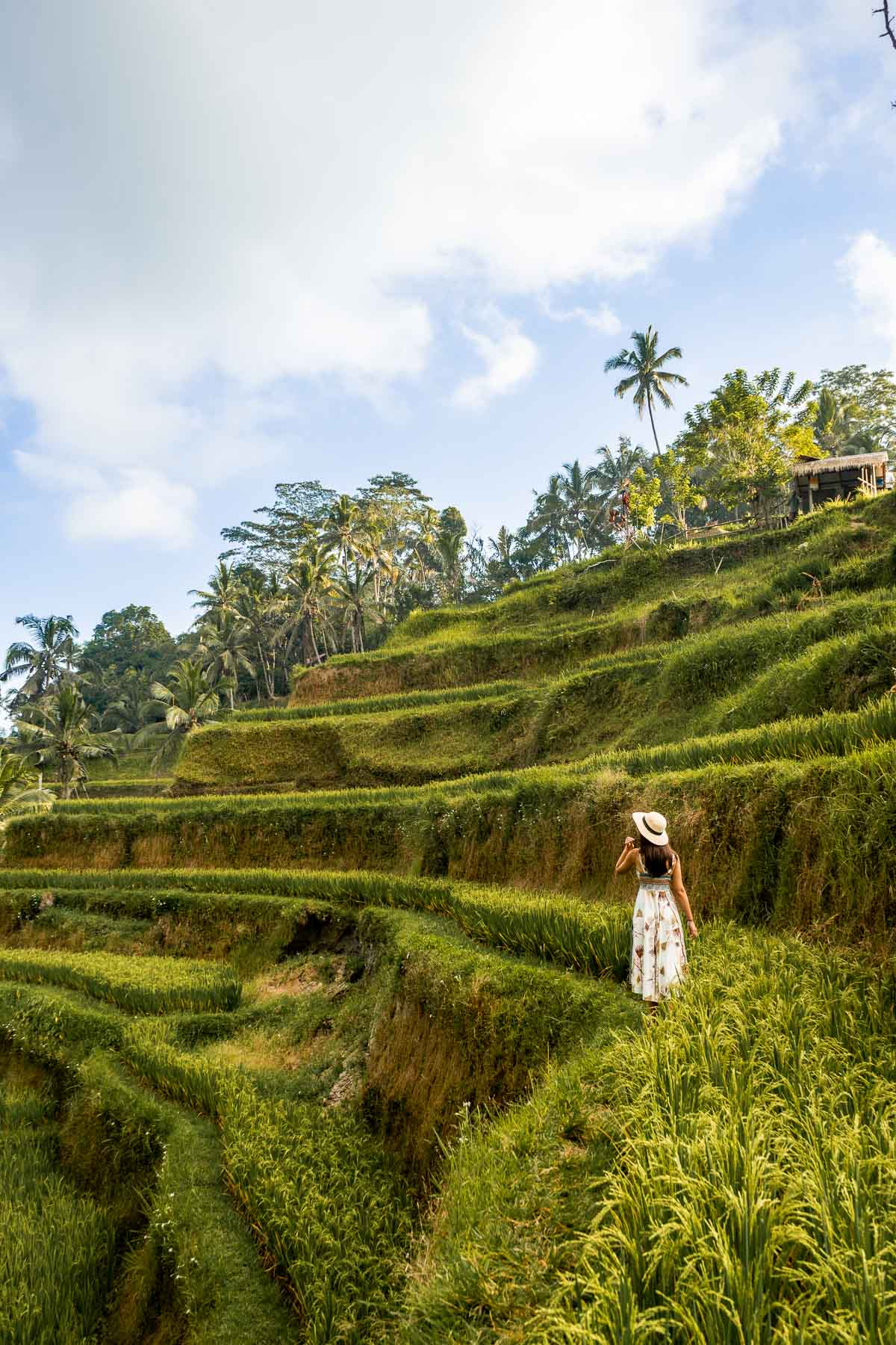 Girl standing among the lush green rice paddies at Tegallalang Rice Terraces in Bali
