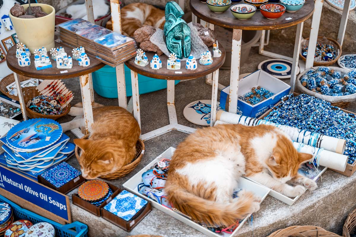 Cats sleeping on top of the souvenirs in Pyrgos, Greece