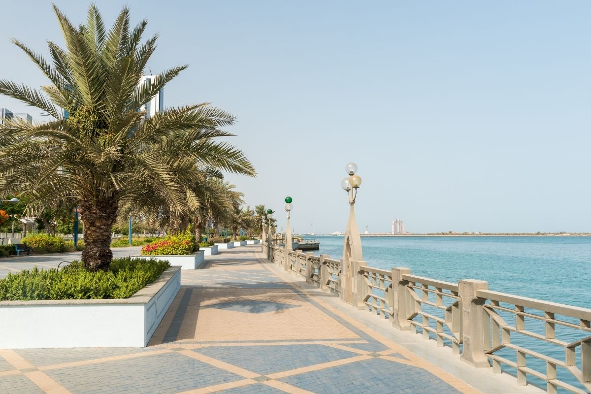 Palm trees by the promenade at the Corniche in Abu Dhabi