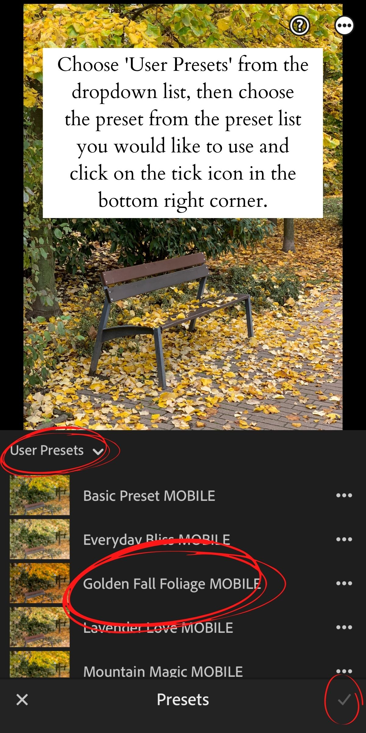 How to Install Lightroom Presets on Mobile 15