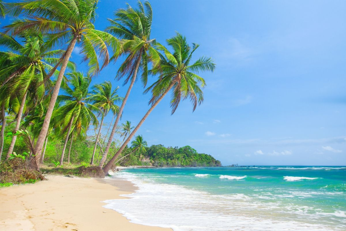 White sandy beach and palm trees on Malapascua Island, Philippines