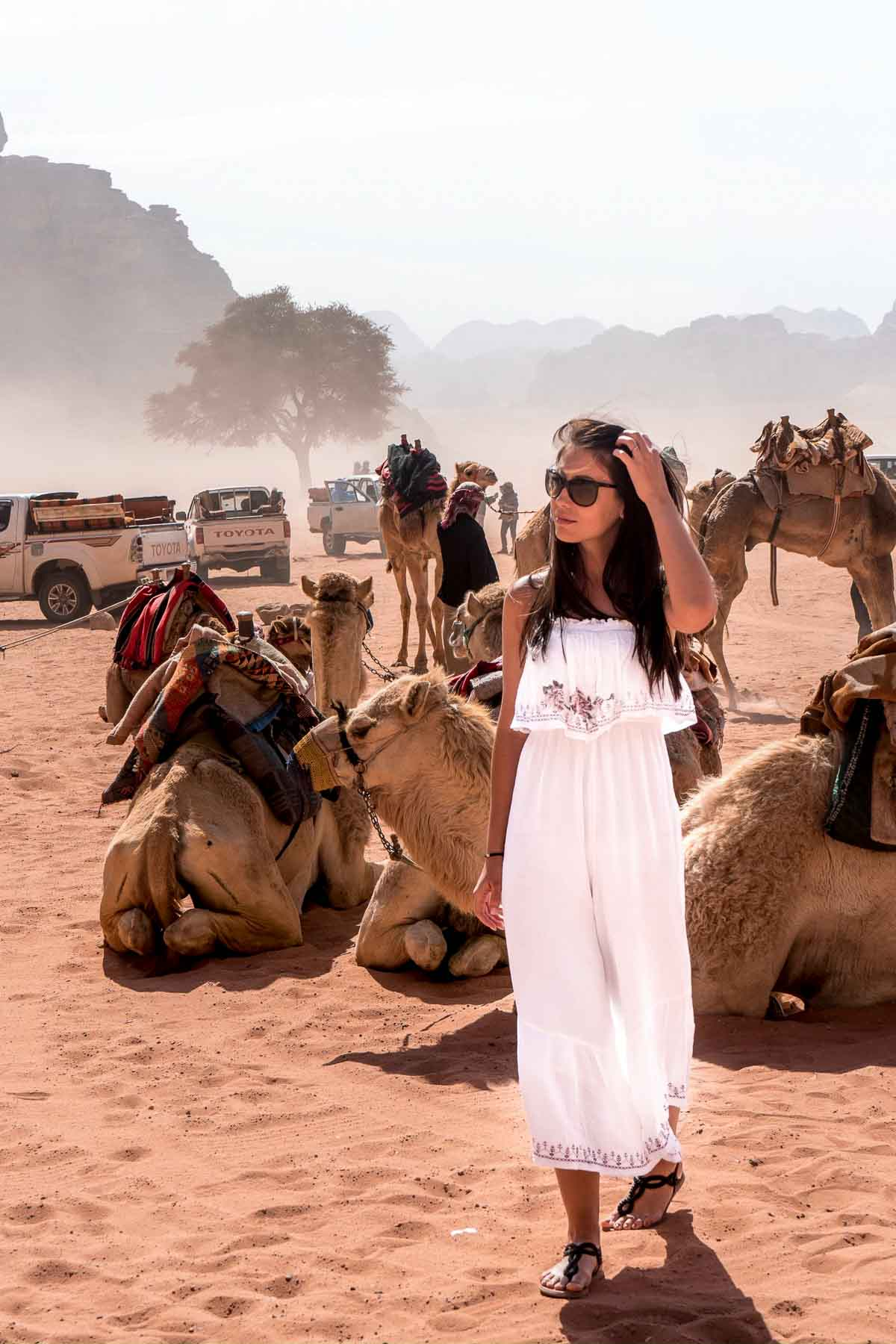 Girl in a white dress standing in front of the camels in the Wadi Rum, Jordan