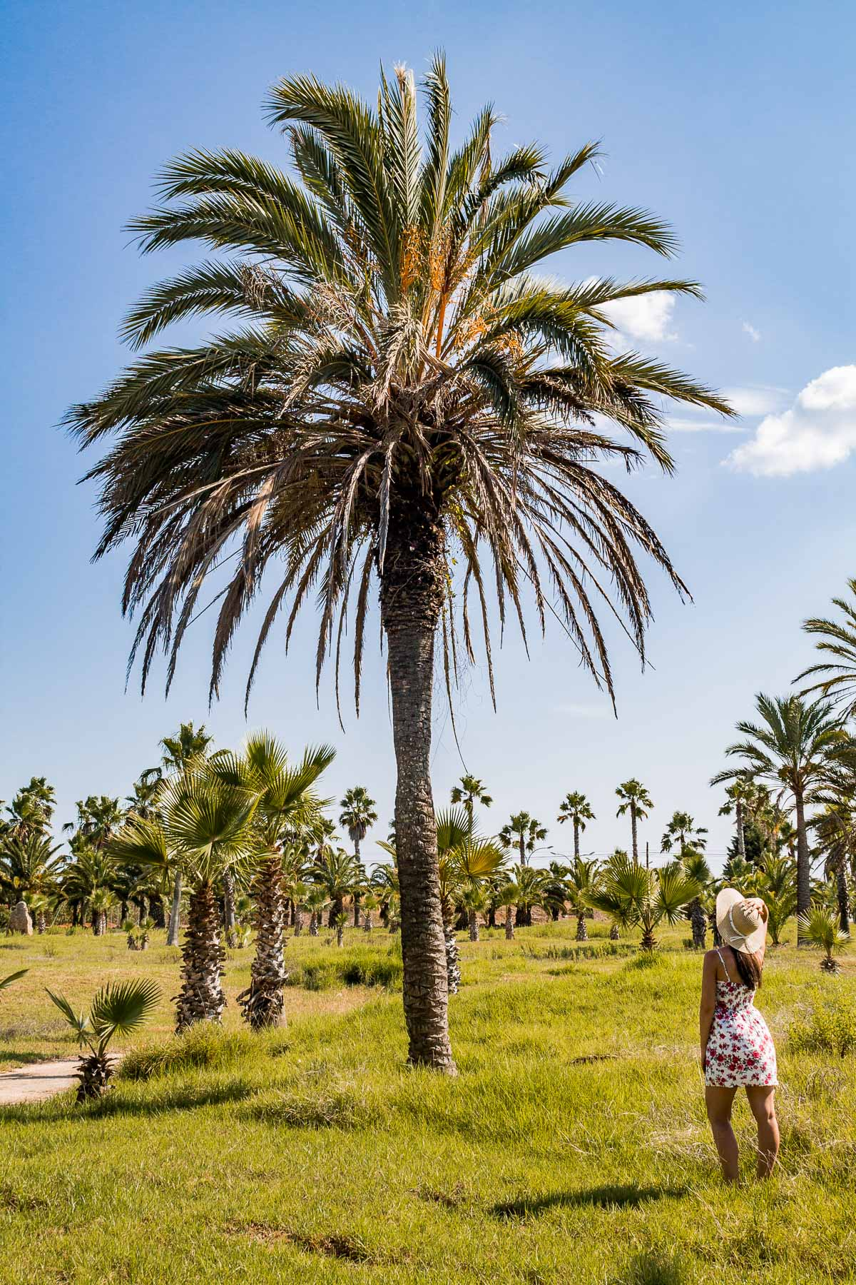 Girl standing in front of a tall palm tree at Botanicactus in Mallorca